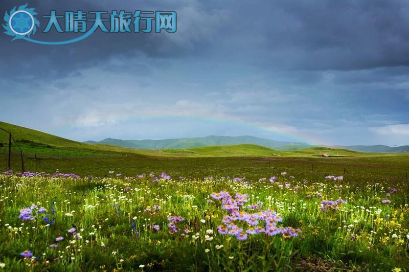 玛曲县位于甘南藏族自治州西南部,地处青,甘,川三省交界,玛曲县风光