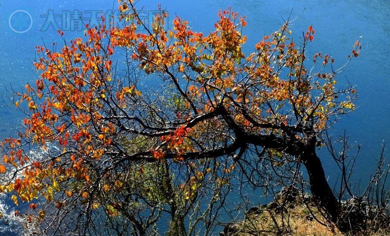 内蒙古阿尔山一柴河旅游区地跨内蒙古兴安盟阿尔山市(县级市)和呼伦贝尔扎兰屯市柴河镇,与黑龙江、吉林省和蒙古国相邻。阿尔山一柴河旅游景区总面积为13168.7平方公里。兴安盟阿尔山市面积7408.7平方公里,呼伦贝尔扎兰屯市柴河镇面积5760平方公里。 柴河镇是个被森林环抱的小镇,由扎兰屯到此处,沿路是漂亮的森林景色,沿着柴河而行,就是主要的风光拍摄之地。在镇子以西40公里的地方,有一个神奇的月亮湖,湖的四周被群岭幽林包围着,如一轮满月平卧,发出幽幽的蓝光,面积不大,方圆只有1.